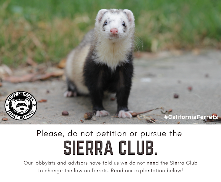 UCFA Sierra Club